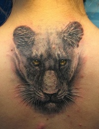 Head of a lioness tattoo on back