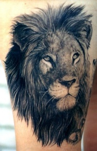 Lion black ink tattoo on arm