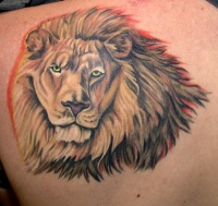 Realistic lion with detailed mane tattoo